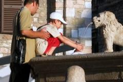 Assisi Miracles